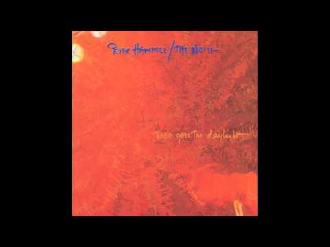 Peter Hammill - Lost And Found