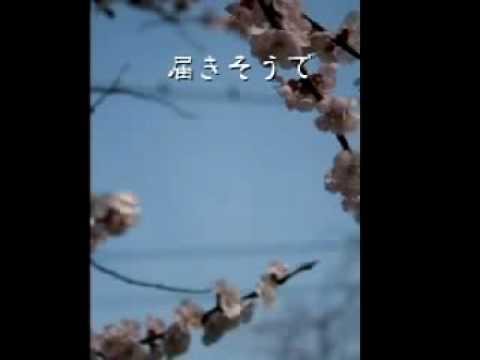 最高の卒業ソング発見!「桜咲く頃」