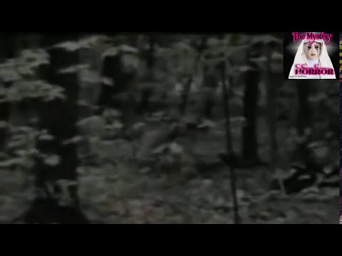 desmintiendo video sobre camara encontrada de 1977 (loquendo)