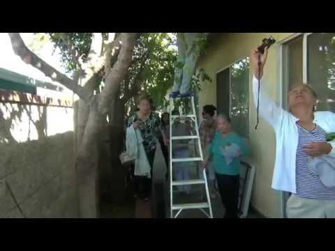 5/6 HÀNH HƯƠNG OCT 3, 2014 : SANTA ANA - LOS ANGELES - LAS VEGAS