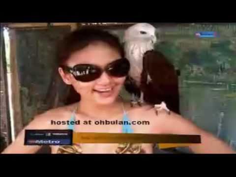 Isu Kontroversi- Wajarkah(Fasha Berbikini)