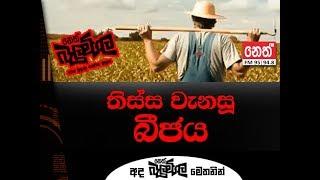 Neth Fm Balumgala | Thissamaharama Farmers (2018-10-25)