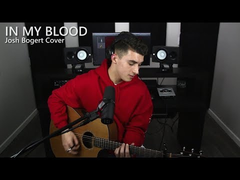 Shawn Mendes - In My Blood (Josh Bogert Cover)