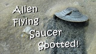 Alien Flying Saucer Spotted! UNBELIEVABLE!!