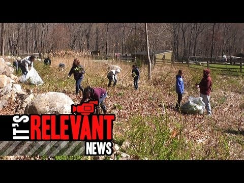 Volunteers Remove Invasive Plants For Earth Day