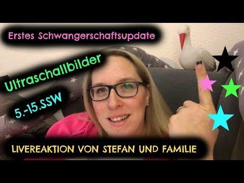 SCHWANGERSCHAFT / LIVEREAKTION VON STEFAN UND FAMILIE / UPDATE / ULTRASCHALLBILDER / SONNISSTERN
