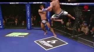 UFC BEST KICK IN  HISTORY