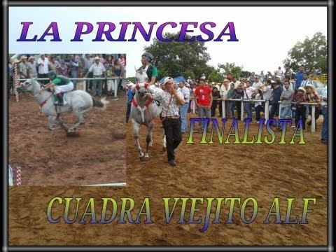 CARRILES SABANETA , SAN JUAN EVANGELISTA, VERACRUZ.. EVENTO 1 DE SEPTIEMBRE 2013