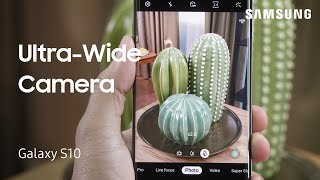 Using Ultra Wide Camera on Your Galaxy S10
