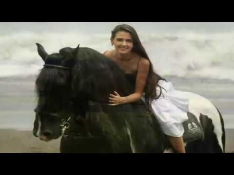 Musica del oeste los mejores caballos del mundo para - El mejor colchon del mundo ...