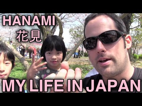 Hanami – Sakura – Cherry Blossoms – 花見 – My Life in Japan – 1 – English Lesson on Japanese Culture