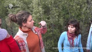 Yuva Do A Evi Kompleksi Alak R Vadisi Antalya