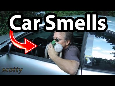 Removing Smells From Your Car