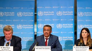 Virtual Meeting: The WHO and the State of Global Health Governance