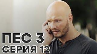 Сериал ПЕС - все серии - 3 сезон - 12 серия - смотреть онлайн