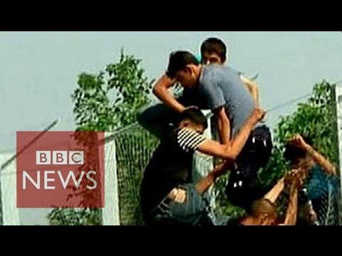Migrant crisis: Border fences around the world - BBC News