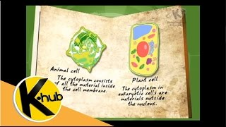 K-Hub | Cell Parts and Functions | Grade 9 Science