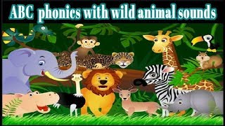 Abc phonics with wild animal sounds | Kids Song| Nursery Rhymes & Baby Songs | ABC KIDS TV