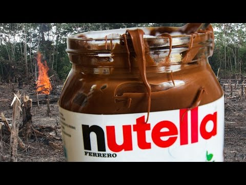 Is Nutella Destroying the Environment?