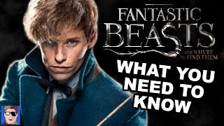What You Need To Know Before Seeing Fantastic Beasts And Where To Find Them