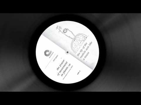 Commodity Place - Soils  [ The Power Of Movement In Plants Ep - ELE-R001]