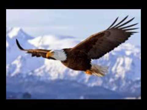 Lirik lagu Mahadewa ,,elang