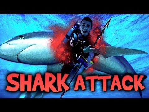 SHARK ATTACK ! - Le Call of Duty : Ghosts des habitants de l'océan !