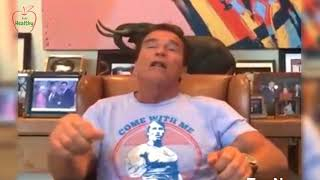 Belly Fat The Best Fastest Way To Lose Belly Fat By Arnold 2017