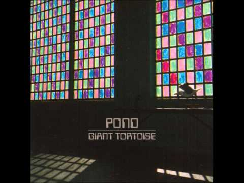 Pond - Giant Tortoise