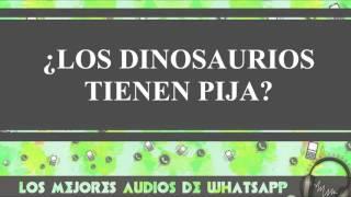 ¿Los Dinosaurios Tienen Pija? - Conversaciones De Whatsapp  - Los Mejores Audios Y Videos Whatsapp