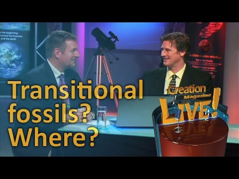 Transitional fossils? Where?  -- Creation Magazine LIVE! (2-22)