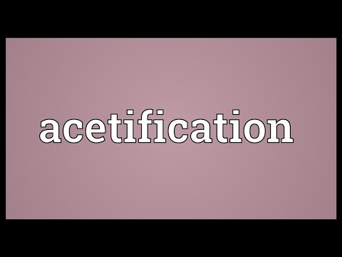 Header of Acetification