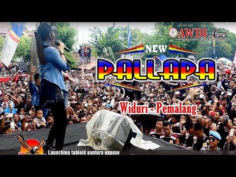 New Pallapa terbaru 2018 FULL LIve Widuri Pemalang