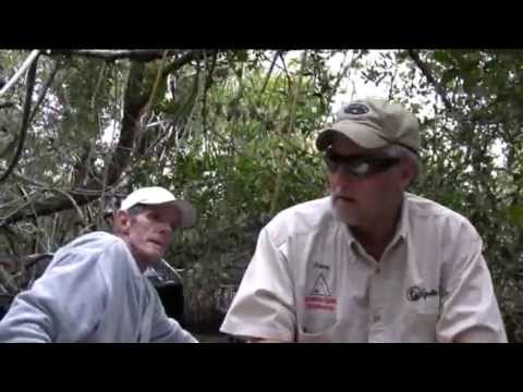 Fishing for Snook in the Everglades