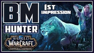 Battle for Azeroth Beast Master Hunter 1st Impression and Review