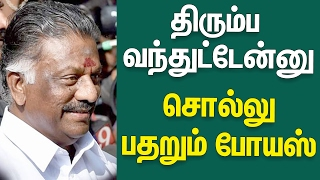 Pannerselvam Speech Against Sasikala In Jayalalitha Memorial | Cine Flick