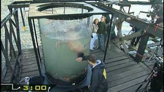 Fear Factor UK - Sn 1: Ep.12