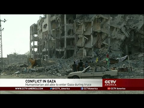 Humanitarian aid reaches Gaza during cease-fire