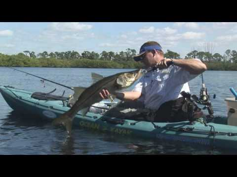 Giant Kayak Snook! Sanibel Fort Myers FL Fishing Video