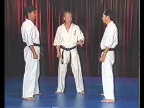 KYOKUSHIN KARATE SELF DEFENSE TRAINING SOSAI MAS OYAMA 2 Image 1