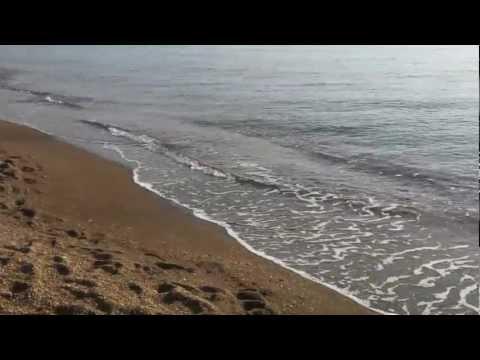 Seppie dalla Spiaggia di Ostia – Eging  HD