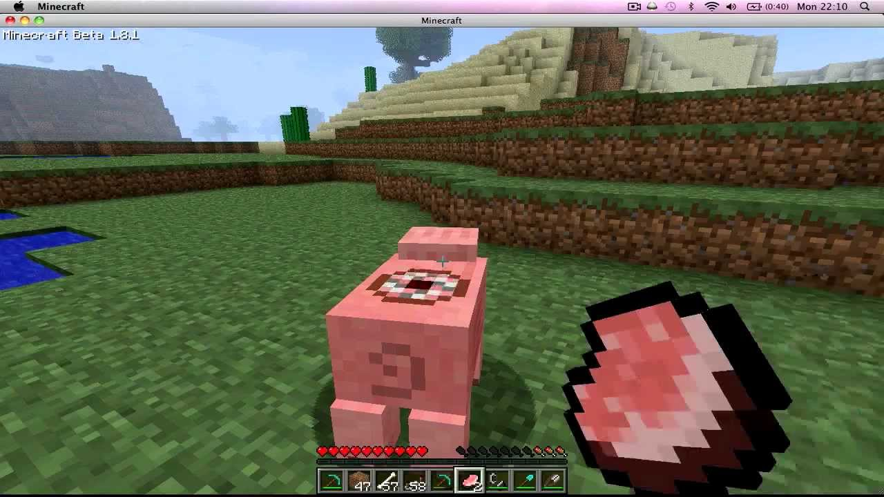 how to make a pig grinder