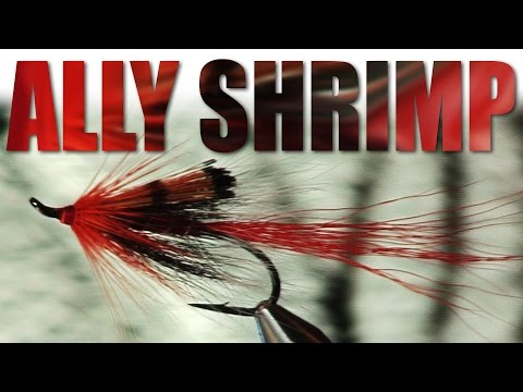 Ally Gowans Ties His Ally Shrimp Flytying