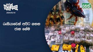 Neth Fm Balumgala | 2020-03-10