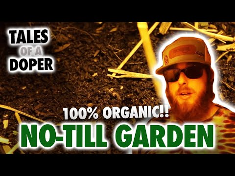 100% Organic No-Till Garden (NO Bottled Nutrients) - Tales Of A Doper 7.5