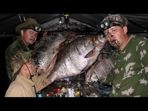 рыбалка в харабалинском районе ахтуба видео