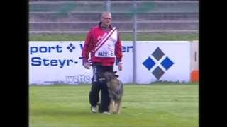 WUSV-WM 2012. (Austria, Steyr). Unexpected moments.