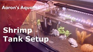 How To Setup A Shrimp Tank