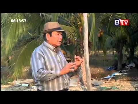 agricultural news in btv versus atn Bangladeshi tv for your entertainment you can watch bangladesghi tv channel like atn bangla, btv, bangla tv, bijoy tv, ekushey tv, channel i, channel 9, ntv, rtv, gazi tv, somoy news 24 hour a day.
