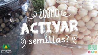 Activación de Semillas ♥ Cereales / Legumbres / Frutos secos / Semillas